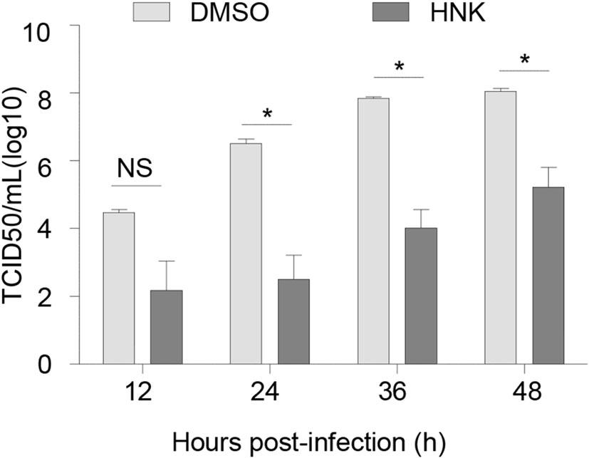 Inhibition of Herpes Simplex Virus-1 Replication by Natural