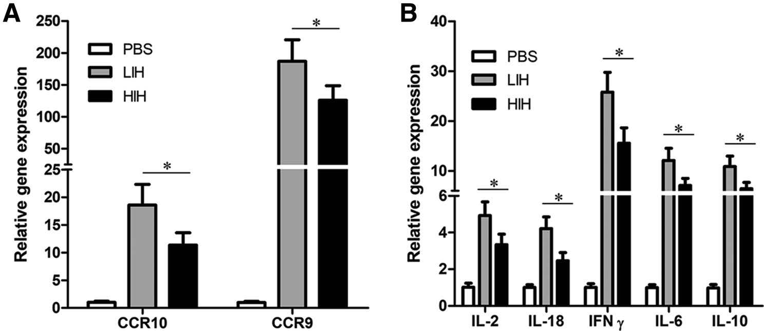 Interferon as a Mucosal Adjuvant for an Influenza Vaccine in Pigs